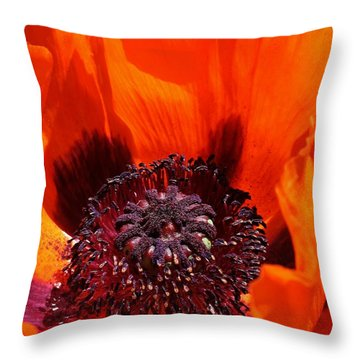 Brilliant Poppy Throw Pillow by Bruce Bley