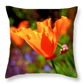 Brilliant Spring Poppies Throw Pillow by Rona Black