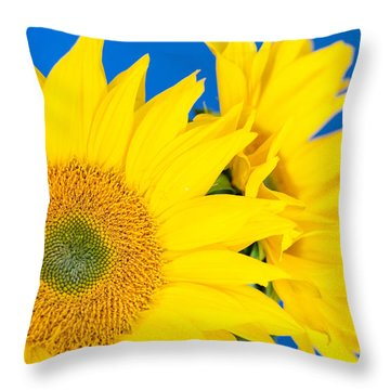 Brilliant Sunflowers Throw Pillow