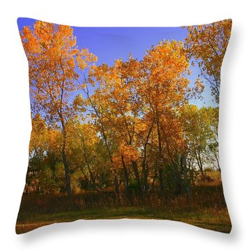 Brilliant Throw Pillow by Toni Hopper