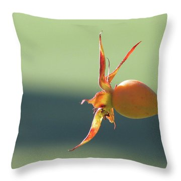 Brilliant Seed Pod Throw Pillow