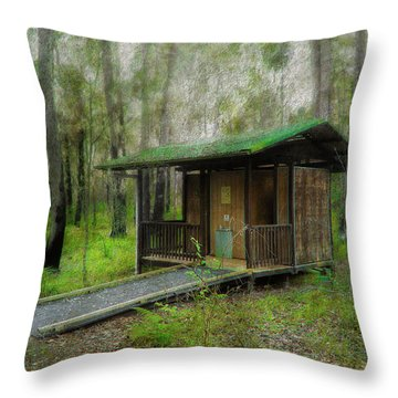 Brimbin Nature Reserve 01 Throw Pillow by Kevin Chippindall