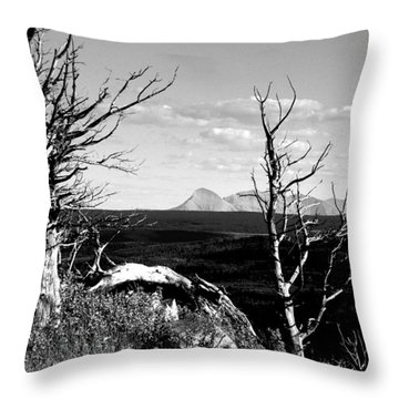 Bristle Cone Pines With Divide Mountain In Black And White Throw Pillow