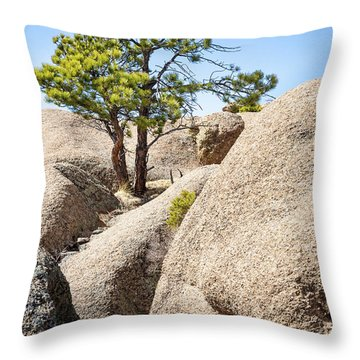 Throw Pillow featuring the photograph Bristlecone In Granite 2 by Tim Newton