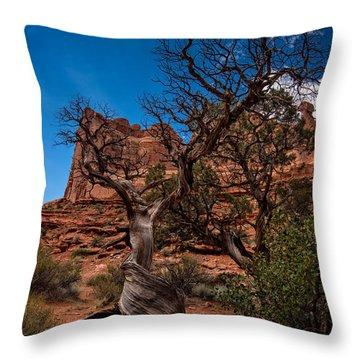 Bristlecone On Park Avenue Throw Pillow