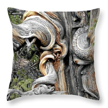 Bristlecone Pine - 'i Am Not Part Of History - History Is Part Of Me' Throw Pillow by Christine Till