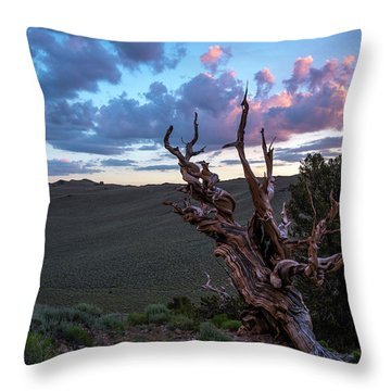Bristlecone Pine Sunset 2 Throw Pillow