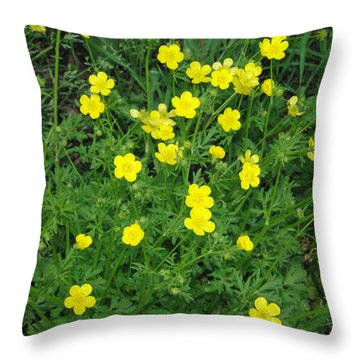 Bristly Buttercup Throw Pillow by Robyn Stacey