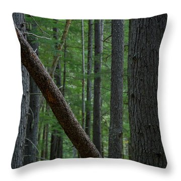 British Columbia Forest Throw Pillow