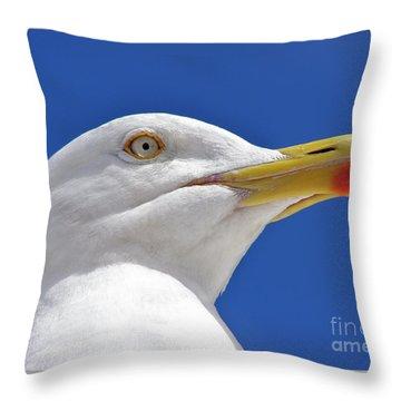 British Herring Gull Throw Pillow by Terri Waters