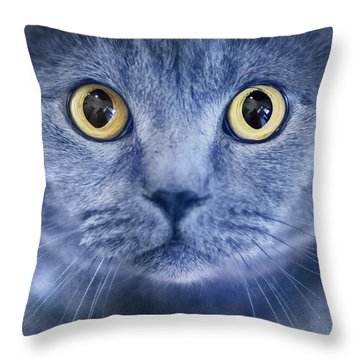 British Shorthair Portrait Throw Pillow