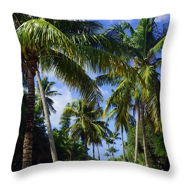 Broad Avenue South, Old Naples Throw Pillow