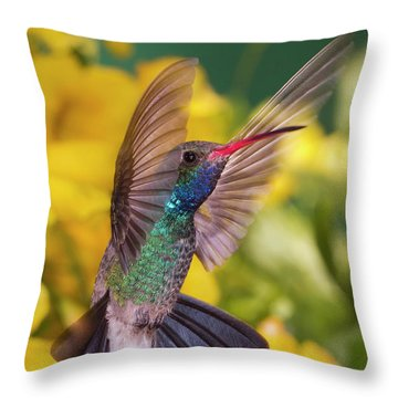 Broad-bill Pose Throw Pillow by Janet Fikar