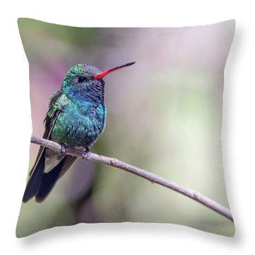 Broad-billed Hummingbird 2008-031718-1cr Throw Pillow