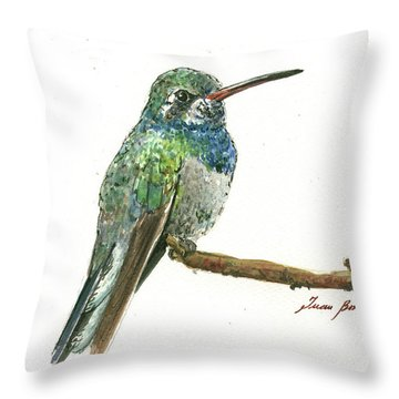 Broad Billed Hummingbird Throw Pillow