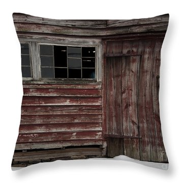 Broad Side Of A Barn Throw Pillow