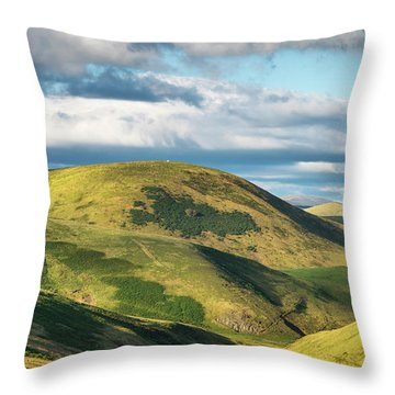 Broadside Law Throw Pillow