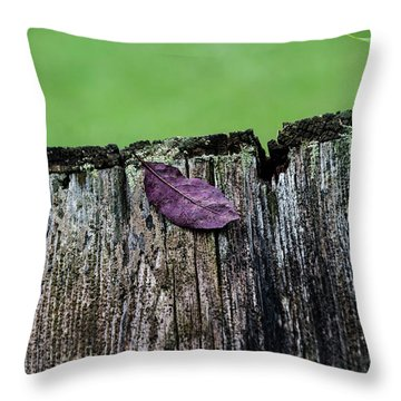Brock's Leaf Throw Pillow