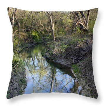Broken Branch Creek Throw Pillow