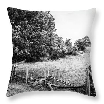 Broken Fences Throw Pillow