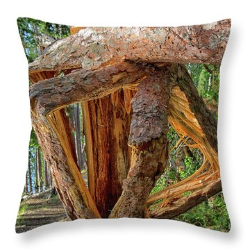 Broken In The Forest Throw Pillow