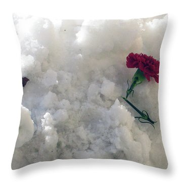 Throw Pillow featuring the photograph Broken Promise by Wanda Brandon