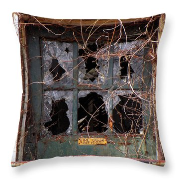 Throw Pillow featuring the photograph Broken Promises  by Lynda Lehmann