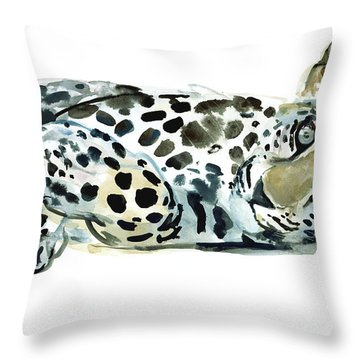 Broken Siesta Throw Pillow by Mark Adlington