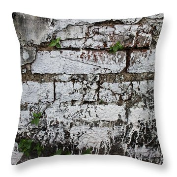 Throw Pillow featuring the photograph Broken Stucco Wall With Whitewashed Exposed Brick Texture And Ve by Jason Rosette