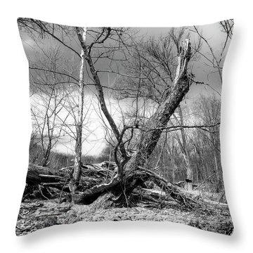 Throw Pillow featuring the photograph Broken Tree by Alan Raasch