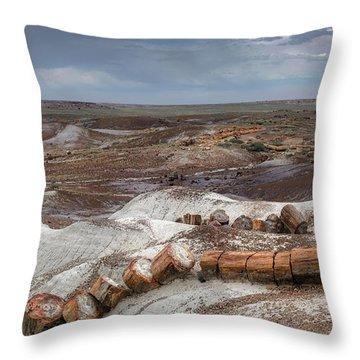 Petrified Forest Throw Pillows