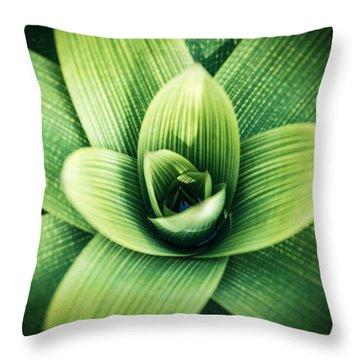 Bromelia Throw Pillow