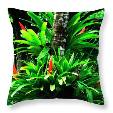 Bromeliads El Yunque National Forest Throw Pillow by Thomas R Fletcher
