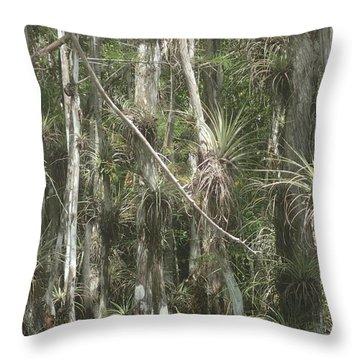 Bromeliads On Trees Throw Pillow