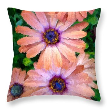 Throw Pillow featuring the photograph Bronze Beauty  by Heidi Smith