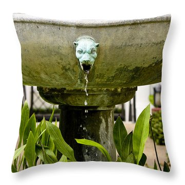 Bronze Civit Head Fountain Throw Pillow