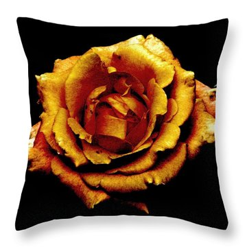 Bronzed Rose Throw Pillow by Angela Davies