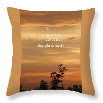 Bronzed Sunset Quote Throw Pillow by Ellen O'Reilly