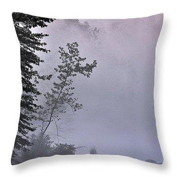 Brooding River Throw Pillow