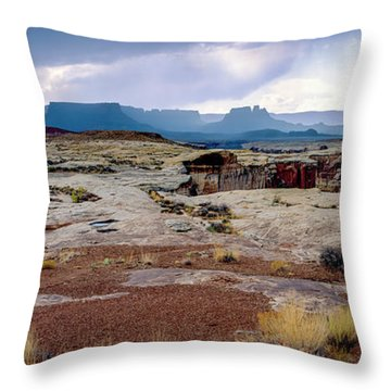 Brooding Sky Summer Storm Throw Pillow