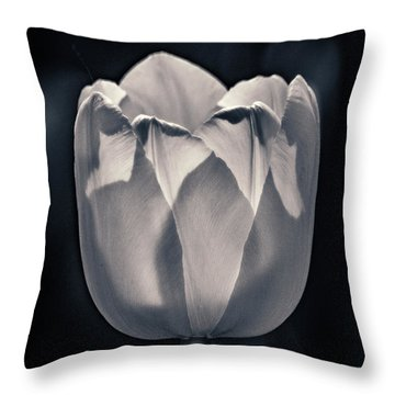 Throw Pillow featuring the photograph Brooding Virtue by Bill Pevlor