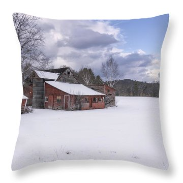 Brookline Winter Throw Pillow by Tom Singleton