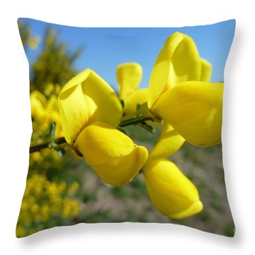 Broom In Bloom 4 Throw Pillow by Jean Bernard Roussilhe