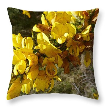 Broom In Bloom Throw Pillow