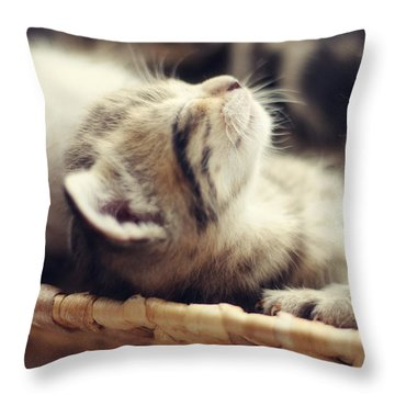 Throw Pillow featuring the photograph Brotherly Love by Amy Tyler