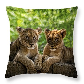 Brothers Chillin Throw Pillow