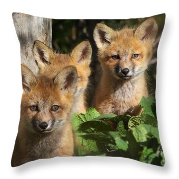 Brothers Throw Pillow by Mircea Costina Photography