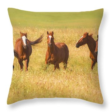 Brothers Throw Pillow by Rima Biswas