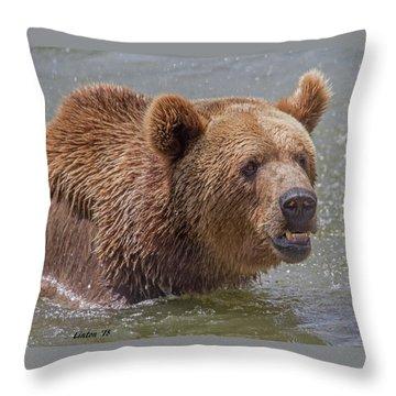 Brown Bear 10 Throw Pillow