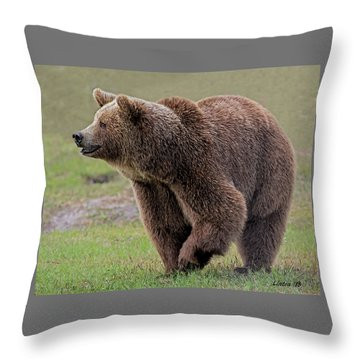 Brown Bear 14.5 Throw Pillow